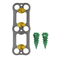 Plate and Screws - OVERHEAD
